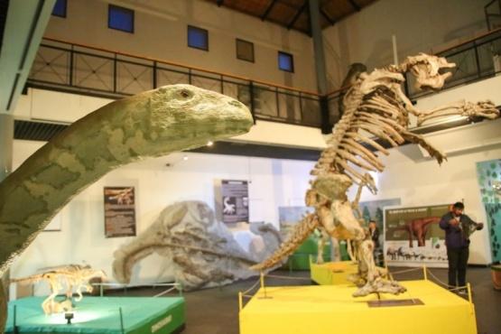 Con cambios y piezas nuevas el museo se abre a la comunidad