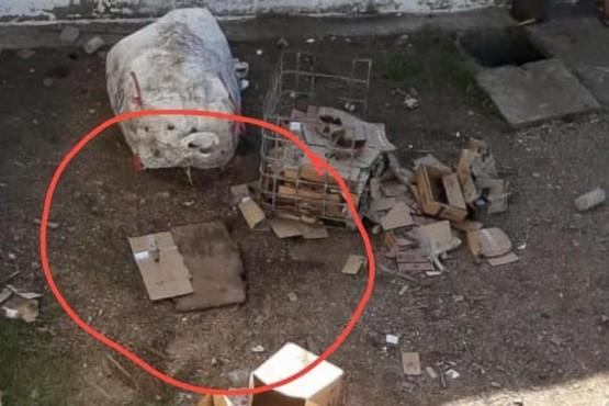 Presos calcularon mal y el túnel de escape salia en el sector de los caniles