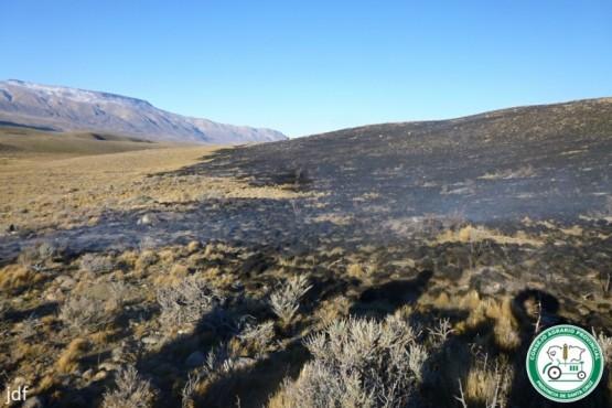 Incendio de pastizales en la cercanías de El Chaltén
