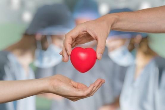 Los órganos del donante funcionan con éxito en tres personas