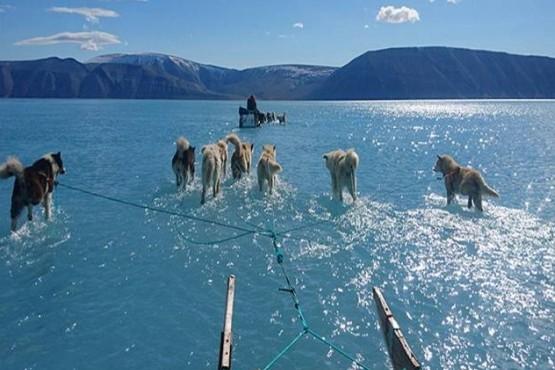 Capa de hielo de Groenlandia perdió 11.000 millones de toneladas en un día