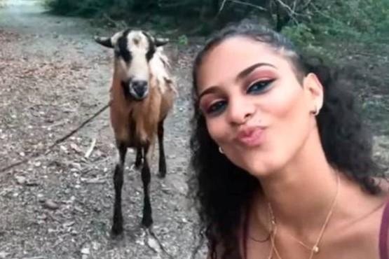Quiso hacerse una selfie y la embistió una cabra