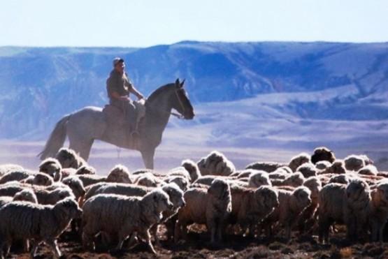 Los predadores y la seguridad por el abigeato, dos de los temas que preocupan al sector rural