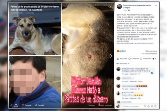 Publicación realizada en las redes sociales por el asesinato de Patitas.