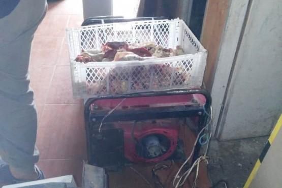 Elementos encontrados durante los allanamientos realizados en la jornada de ayer, por el personal de la División Operaciones Rurales de El Calafate.