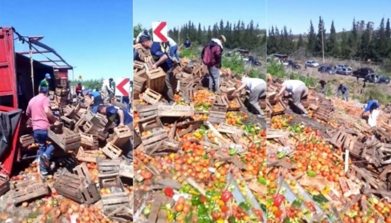 Vecinos aprovecharon de juntar verduras del camión volcado.