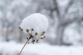 Conoce como estará el clima en Tierra del Fuego