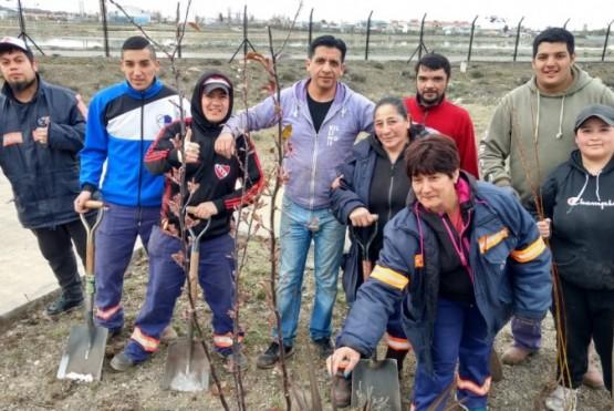 Trabajadores realizando la campaña de forestación. (C.G)
