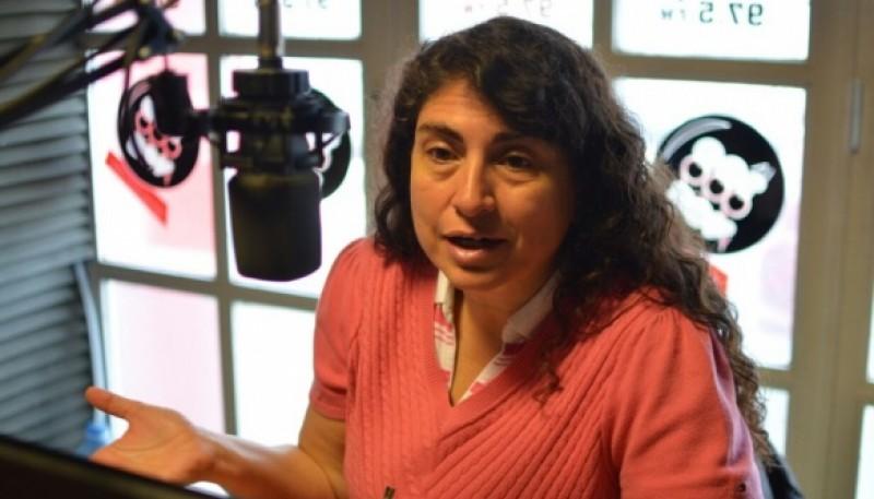 La senadora Ana María Ianni se refirió a la situación del SAMIC. (foto archivo)
