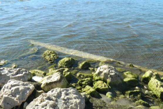 Traza del Lago Musters. (El Patagónico)