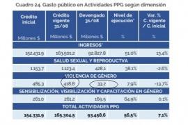 Se ejecutó solo el 7,9% de todo el presupuesto contra la Violencia de Género