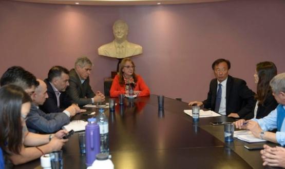 Alicia en la reunión.