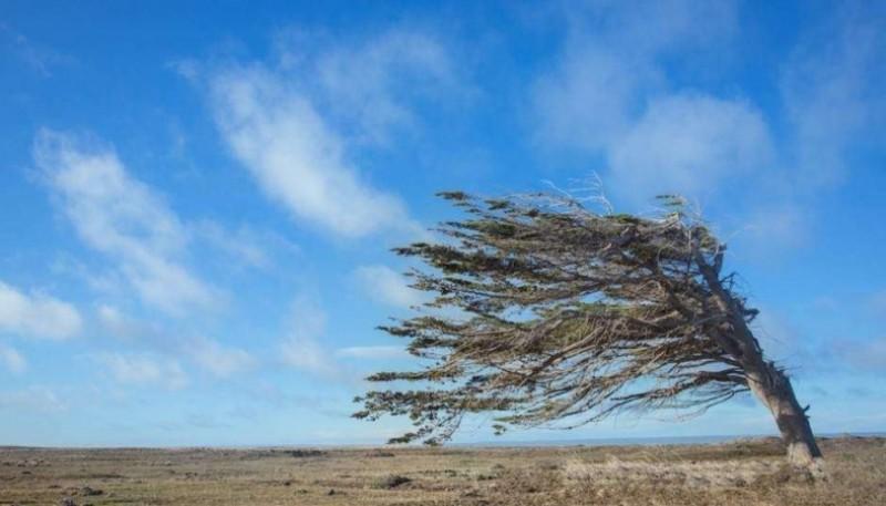 Ráfagas de viento en un clima frío en el sur.