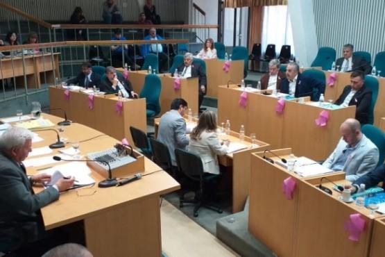 Sesión en Cámara de Diputados. (C.R)