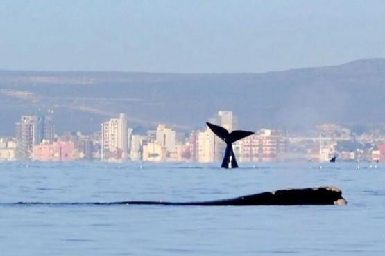 Lindo clima en Puerto Madryn.