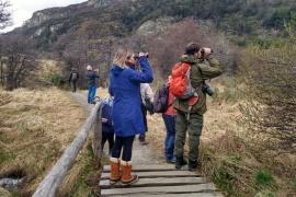 Día Mundial de Observación de Aves