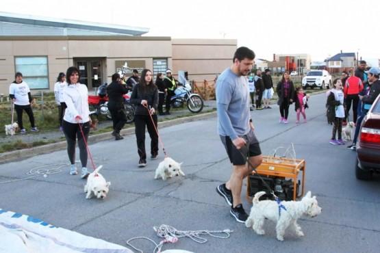 Gómez Bull también llevó sus perritos.