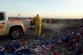 Realizan fumigación en el Vaciadero municipal para combatir las moscas