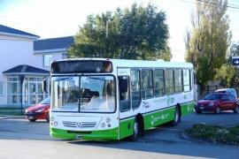 Se normalizó el servicio de transporte urbano