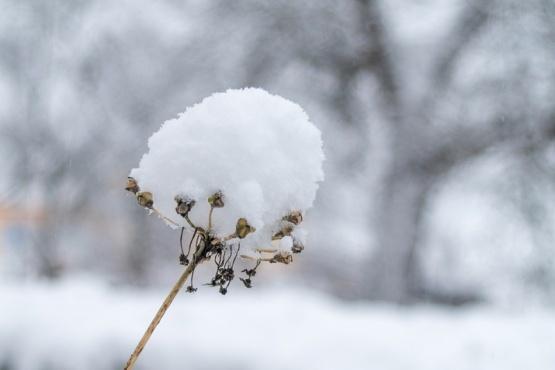 Frío y nieve en Ushuaia.