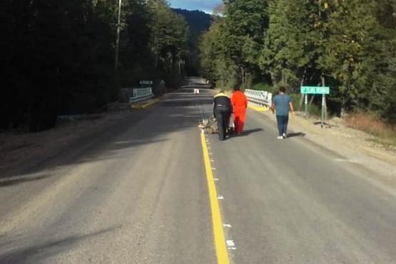 Antes de fin de años asfaltarán 3 km de la Ruta N°71