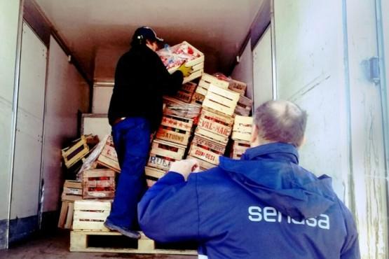 Se secuestraron 2872 kilos de hortalizas.