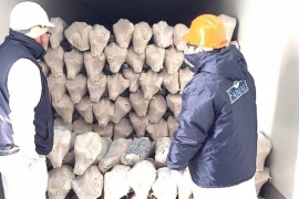 Esperan que los tres frigoríficos puedan exportar corderos a China