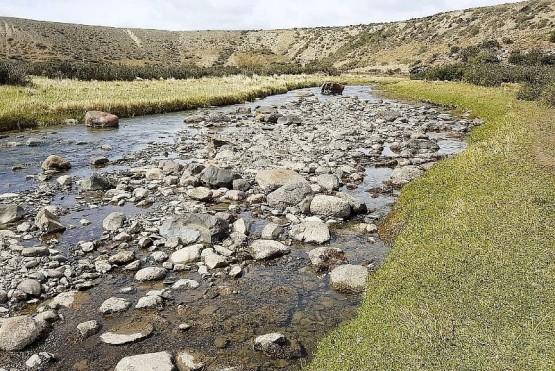 El río Vizcachas es el que ponen de ejemplo los pescadores. (Ilustrativa).
