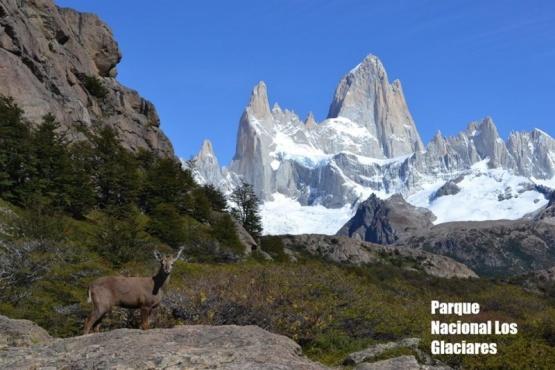 PN Los Glaciares.