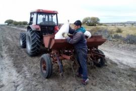 CORFO brinda servicio de maquinaria agrícola a productores