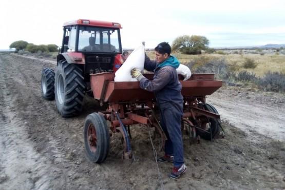 Recorrieron el predio donde se nivelaron 1,5 hectáreas para siembra de pastura y maíz