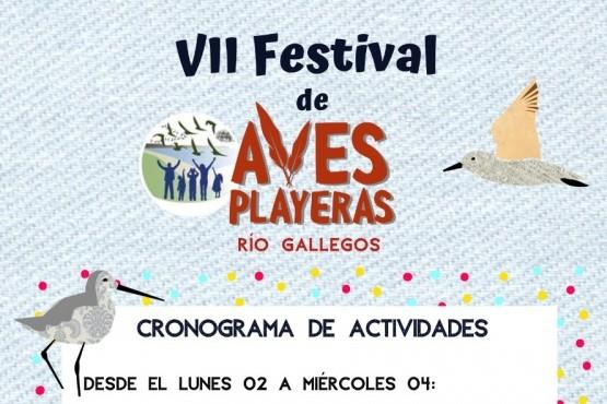 Se viene el 7° Festival de Aves Playeras