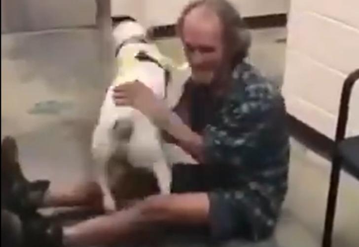 Captura de video del momento en que el hombre se reencuentra con su perro.