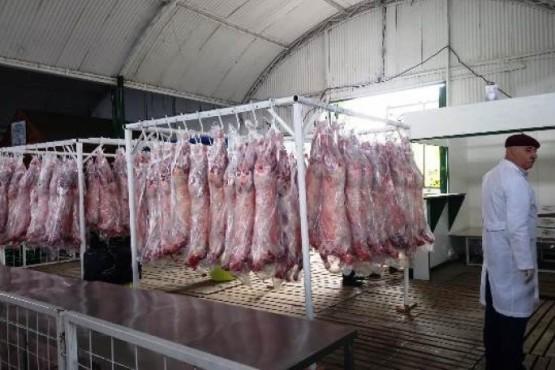 Los corderos frescos se venderán a mediados de diciembre en la Rural de Río Gallegos.