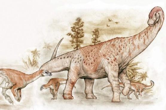 Hallazgo histórico: descubrieron nuevas especies de dinosaurios en Santa Cruz