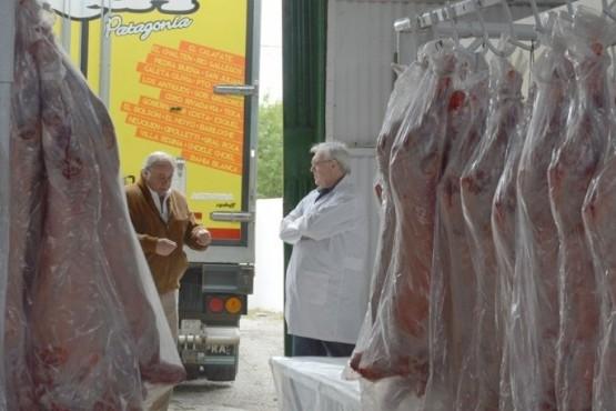 Confirmaron a cuánto se venderá el kilo de cordero