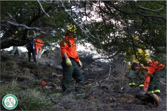 Personal del Consejo Agrario Provincial y La Brigada Voluntaria de Incendios Forestales.