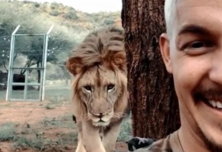 Captura de video del cuidador del zoológico junto al león.