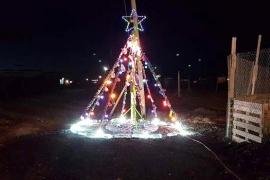 Robaron las luces de un arbolito de Navidad
