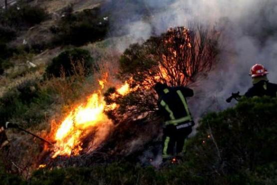 El fuego habría sido por los fuegos artificiales arrojados y cayeron al lugar.