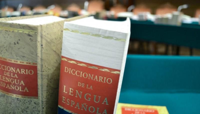 La lengua española y sus nuevos términos.