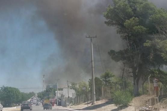 Incendio en un campo afecta a Las Grutas.