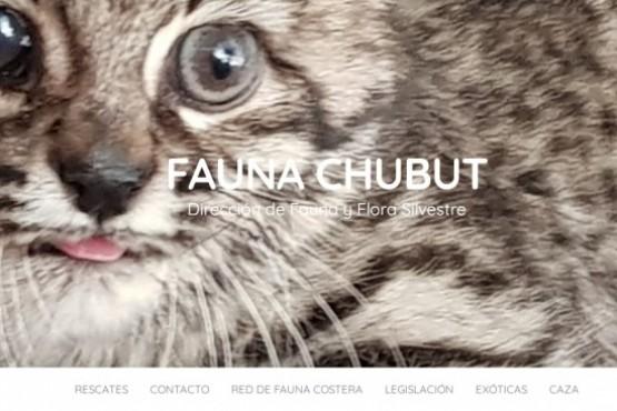 Los formularios y requisitos se encuentran disponibles en la página web fauna.chubut.gov.ar
