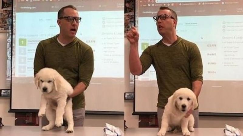 Amenazó con matar el perrito.