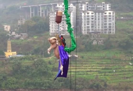 Captura de video del momento en que arrojan al chancho.
