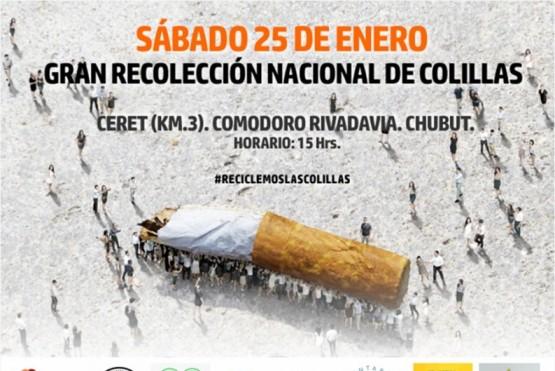 Jornada de recolección nacional de colillas