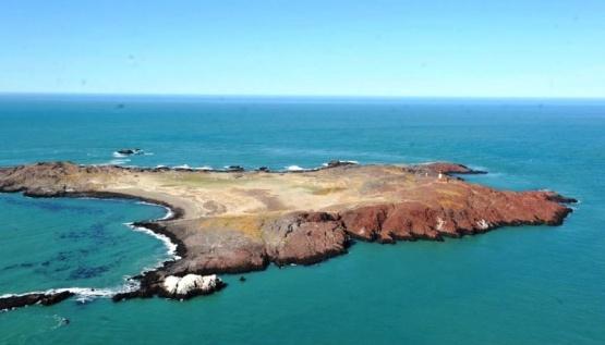 La Isla Pingüinos es visitada durante siete meses del año.