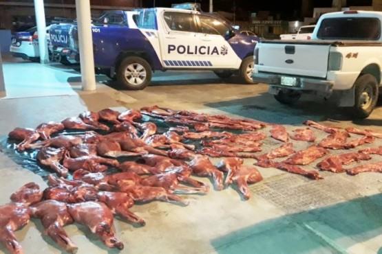La carne fue secuestrada e incinerada en el vaciadero local.