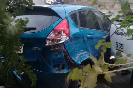 Auto chocado contra un árbol.