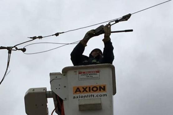 Trabajo de SPSE sobre los cables de luz.